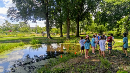 Students gathering next to a pond