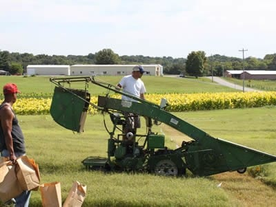 Person working on farm machinery