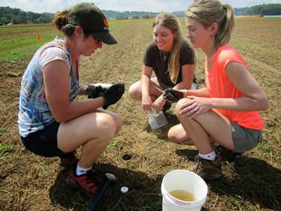 Students researching soil
